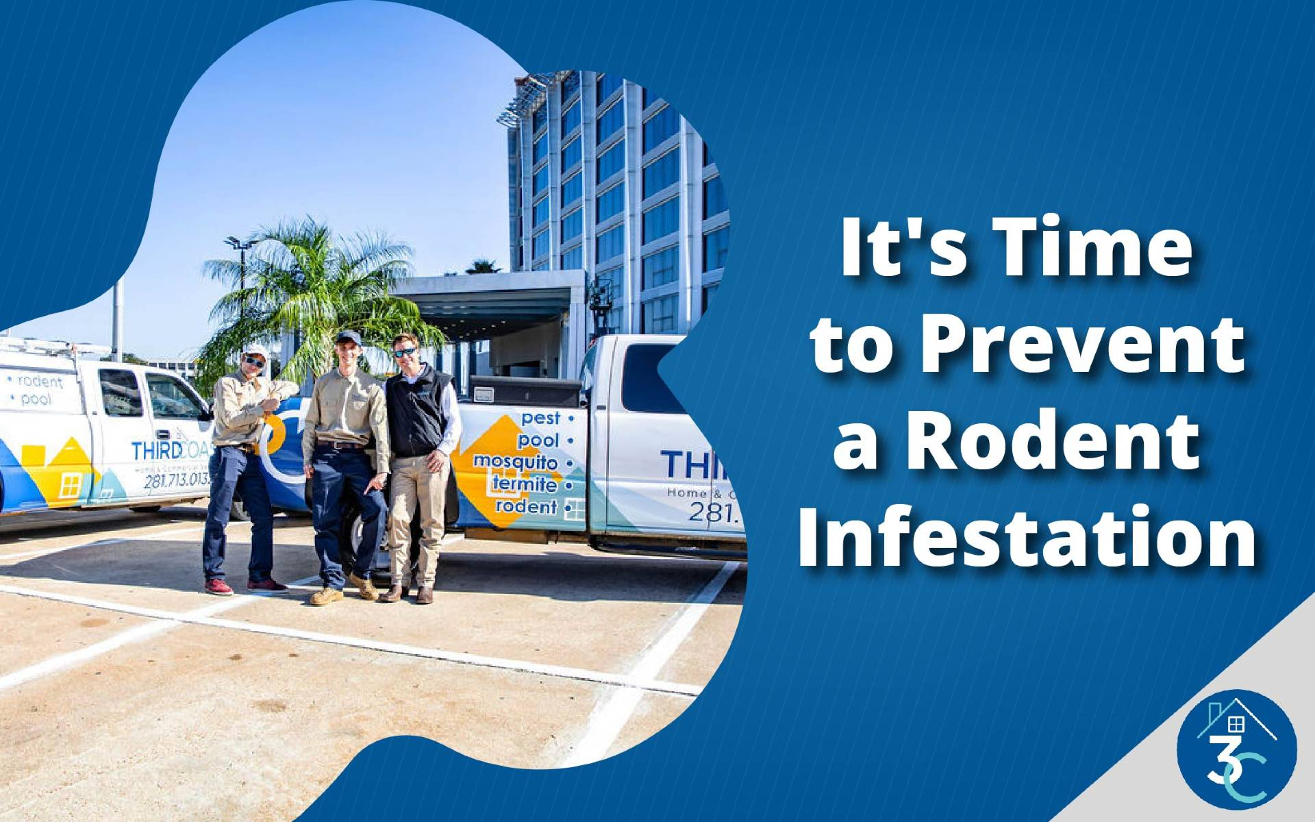 It's Time to Prevent a Rodent Infestation