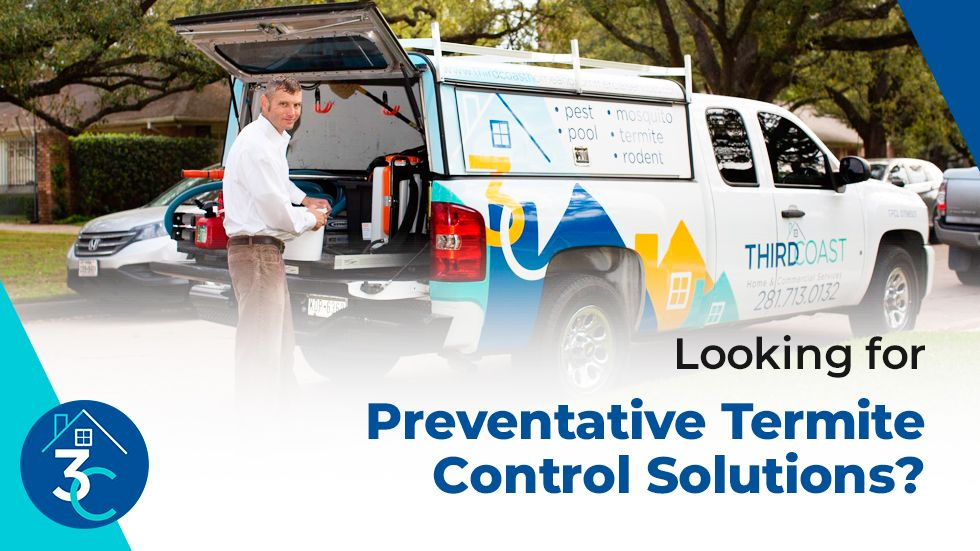 Looking-for-Preventative-Termite-Control-Solutions