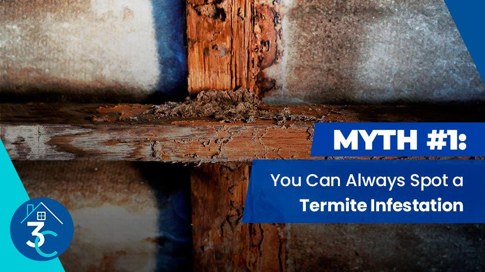 Myth-#1-You-Can-Always-Spot-a-Termite-Infestation.jpg
