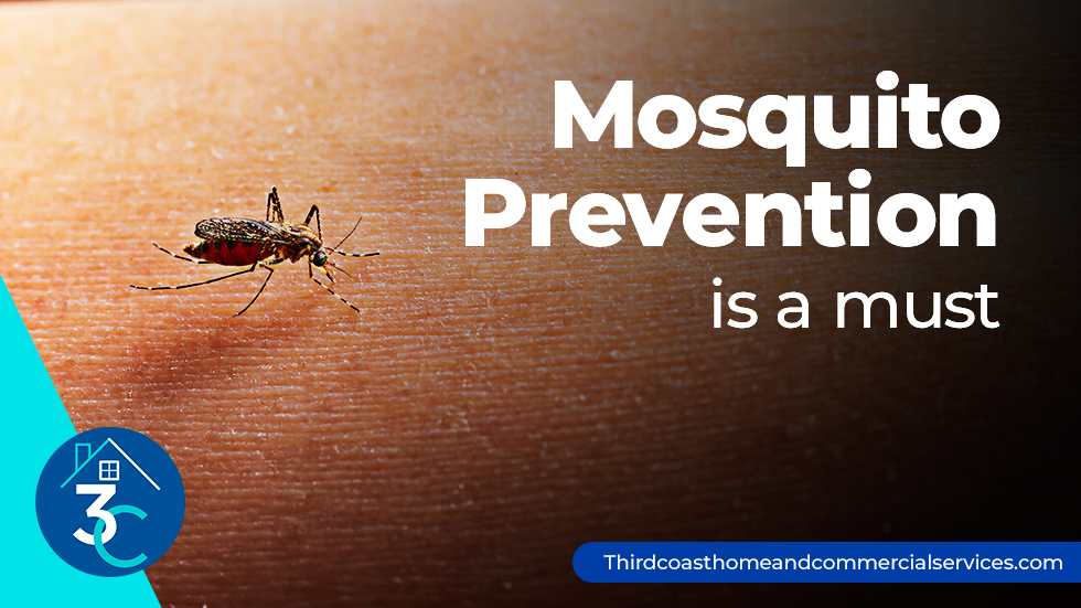 Mosquito-Prevention-is-a-must