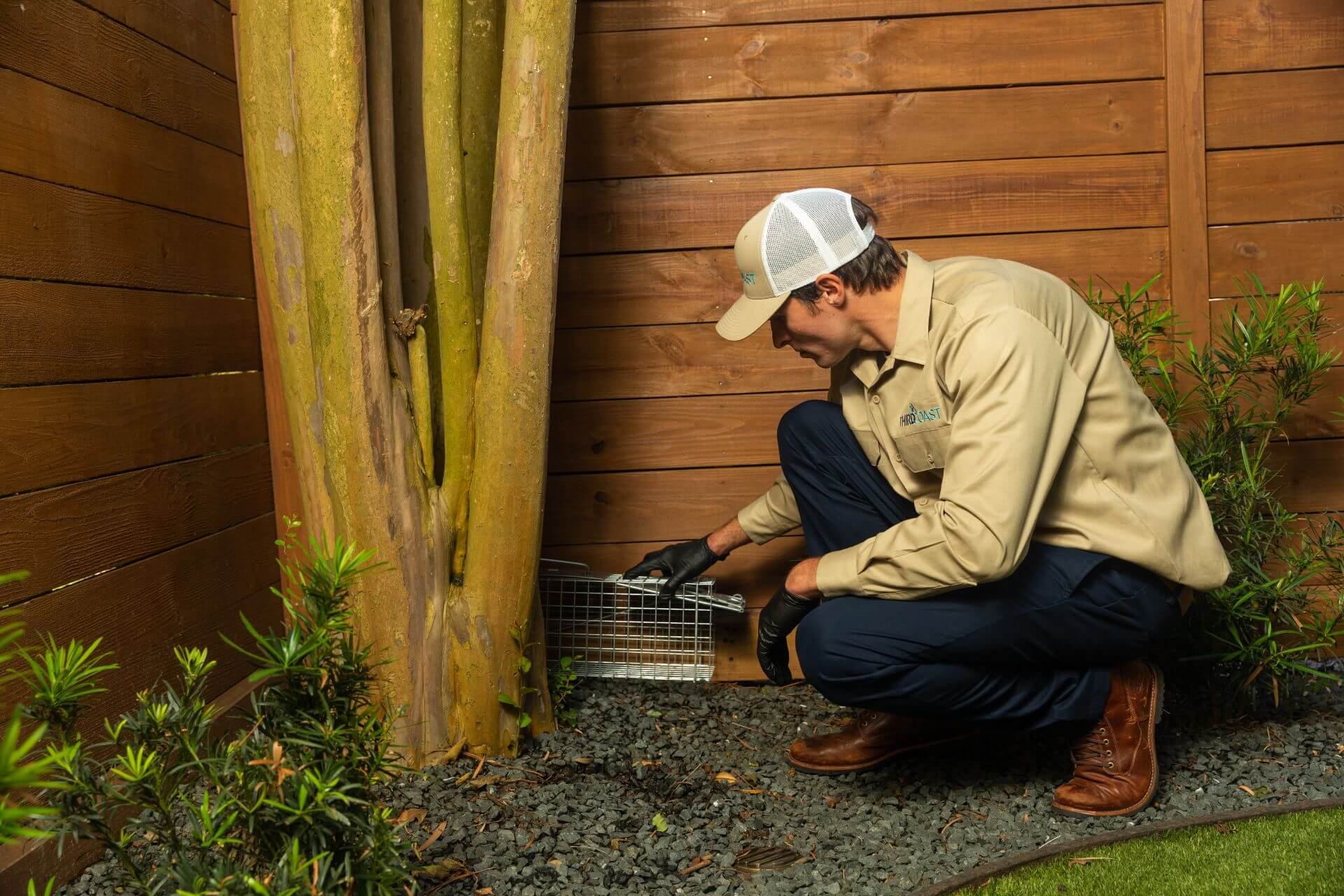 Rodent Control Houston