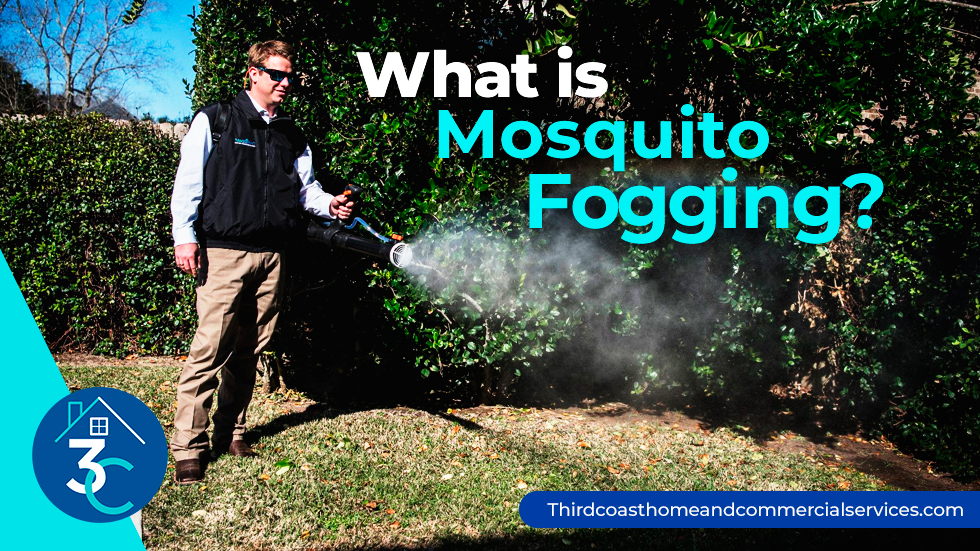 What-Is-Mosquito-Fogging